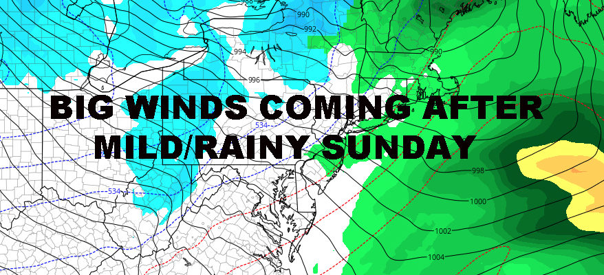 Nyc Winds Howl After Mild Rainy Sunday Nyc Weather Now